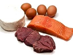 protein photo
