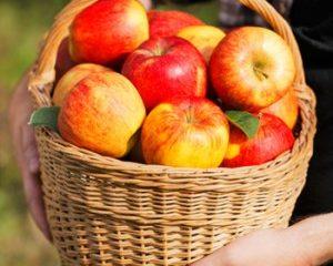 apples-300x300